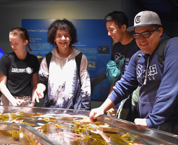 Students at the California Academy of Sciences