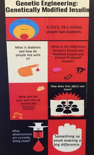 Panel from poster on genetically modified insulin.
